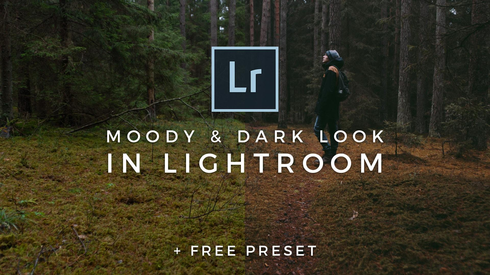 FREE Dark Moody Lightroom Preset - Signature Edits - Edit
